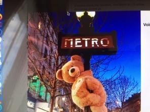 Bear on Metro sign